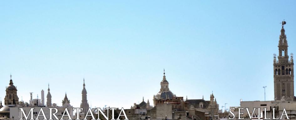 Vista desde la Torre de don Fadrique