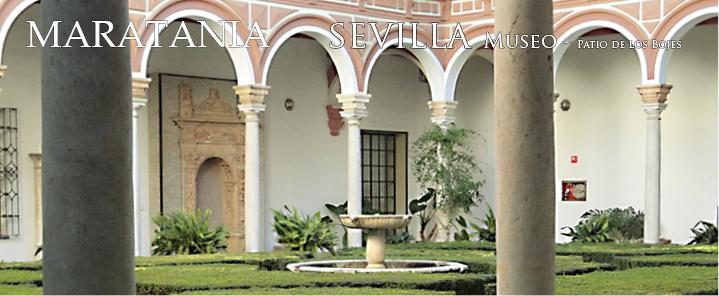 Patio Bojes Museo de bellas artes sevilla