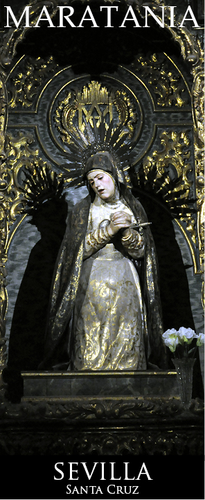santa cruz 4