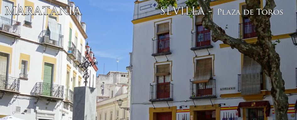plaza toros4